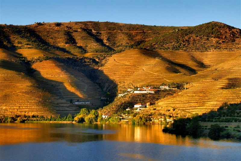 If you travel to Oporto, go north and visit Douro